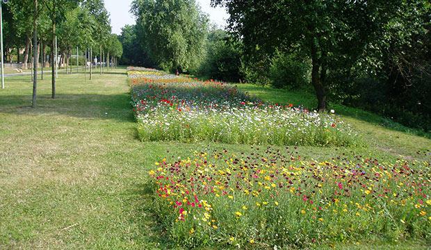 Espaces verts ville de notre dame de bondeville for Les espaces verts en ville