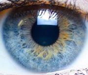 surveiller_environnemeny